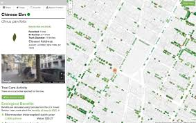 New York City Street Map by New York City Street Tree Map Gives Info On Over 685 000 Nyc Trees