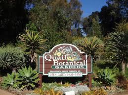 San Diego Botanical Garden Foundation Sandiego Botanical Botanical Garden Photography