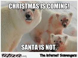 Polar Bear Meme - christmas is coming funny polar bear meme pmslweb