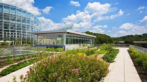 advantages of eco friendly landscaping for commercial areas