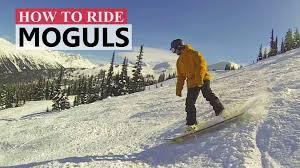 videos great white snow