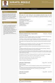 Sample Resume Of Cashier Customer Service by Head Cashier Resume Samples Visualcv Resume Samples Database