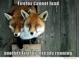 Fox Meme - fox meme weknowmemes