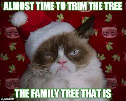 Family Christmas Meme - time to trim the family tree imgflip