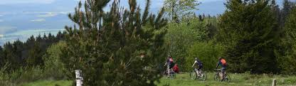 Rose Klinik Horn Bad Meinberg Fahrrad Mountainbike Horn Bad Meinberg