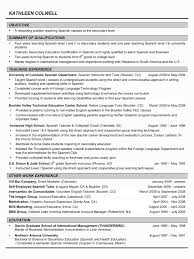 audit manager resume samples cheap critical analysis essay