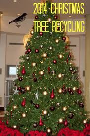 philadelphia christmas tree recycling 2013 2014