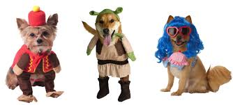 target halloween dog costumes freshpet our favorite pet friendly halloween costumes