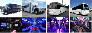 party rental near me charter rentals fort myers limousine service