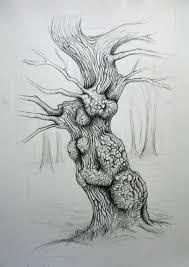 Oak Tree Drawing Tree Drawings Edward Foster Artedward Foster Art