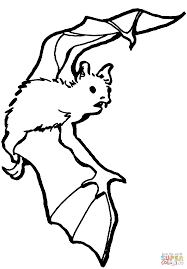 bat coloring page free printable coloring pages