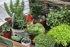 How To Build An Herb Garden How To Make A Miniature Fairy Garden In A Container Hgtv