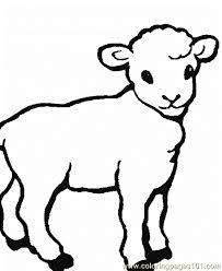 sheep coloring 0001 12 coloring free sheep coloring