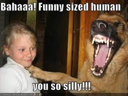 Are You Crazy Meme - oh you so crazy image gallery know your meme