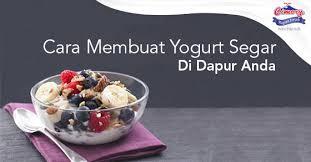 cara membuat yoghurt yang kental cara membuat yogurt segar di dapur anda cimory