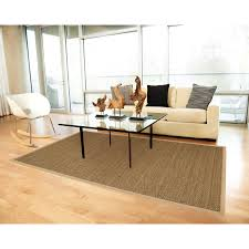 Cheap Rugs For Living Room Decorating Wonderful Seagrass Rugs For Floor Accessories Ideas