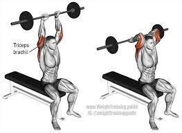 overhead barbell triceps extension an isolation exercise that