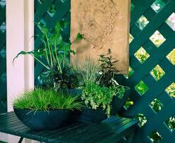 Table Top Herb Garden Tropical Tabletop Water Garden