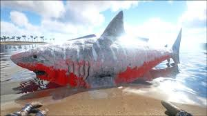 biggest megalodon shark megalodon official ark survival evolved wiki