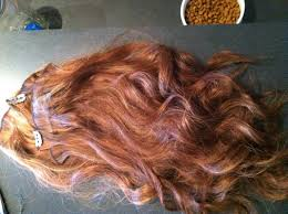 euronext hair extensions euronext hair extensions toffee brown on and extensions