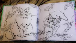 counting pinecones a cat in paris a magical coloring book