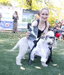 Lamb Chop Halloween Costumes Happy Halloween Adbiblio 15 Literary Pet Costumes