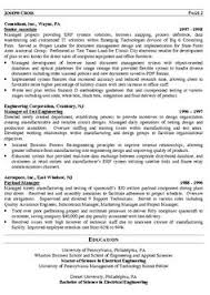 It Director Resume Examples by Business Resume Template Effective Ways To Use Them Resume