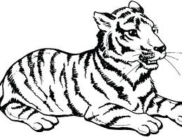 coloring page tiger paw coloring pages tiger free tiger coloring pages tiger coloring pages