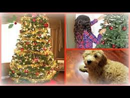 Dogs Decorating Christmas Tree Video by C2c Ep 3 Let U0027s Decorate Our Christmas Trees My Tree Youtube