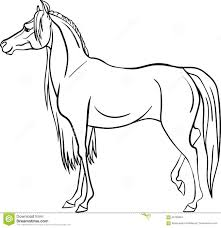 coloring page with horse stock vector image 66193894
