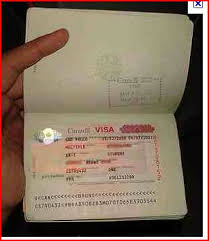 so you want to immigrate to canada the immigrant has landed