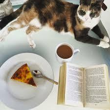 not so lite healthy vegan recipes and a bit of cat talk u2026