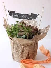 teacher appreciation garden plant gift ideas this teacher