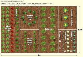 Veggie Garden Design Ideas Vegetable Garden Layouts Ideas Garden Layout Planner Vegetables
