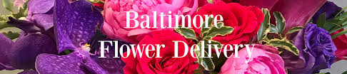 flower delivery baltimore baltimore flower delivery flowers fancies baltimore md