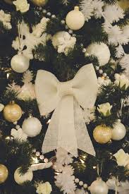 White Bows For Tree Flashback Designers Trees In Gum Allanstey