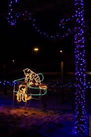 Zoo Lights Coupons by The Calgary Zoolights Outdoor Escapade Canadian Trip Reports