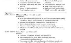 food server resume examples awesome collection of resume sample