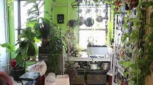garden indoor vertical gardening