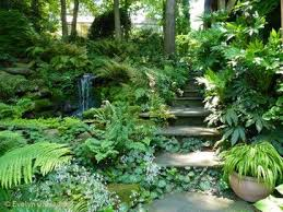122 best landscaping ideas images on pinterest landscaping ideas