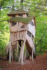 tree houses for the child within u2026