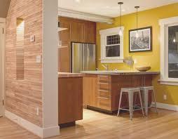 kitchen best kitchen designs colours room design plan fresh on