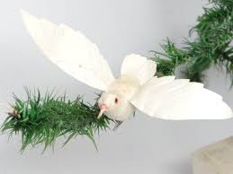 64 best doves images on merry