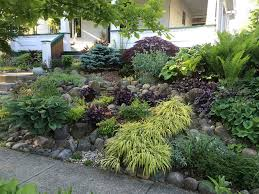 Shady Backyard Landscaping Ideas When A Shady Garden Unexpectedly Turns Sunny Fine Gardening