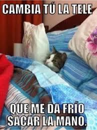 Funny Memes In Spanish - pin by bucio dark on memes en español pinterest