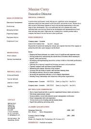 executive director resume management exle sle
