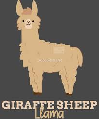Alpaca Sheep Meme - funny animal name meme giraffe sheep llama by porcodiseno redbubble