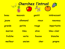french teaching resources odd one out adjectives warmer starter