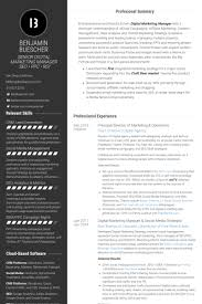 Marketing Resume Example by Online Marketing Resume Samples Visualcv Resume Samples Database