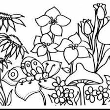 rose garden coloring kids drawing coloring pages marisa